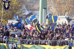 11.Spieltag: TuS - MSV Duisburg (1:1)