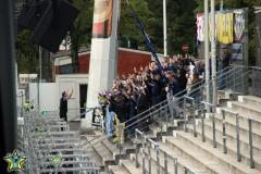 12.Spieltag: VfB Stuttgart II - TuS (2:1)