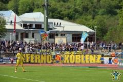 35.Spieltag: TuS - TSV Steinbach (0:1)