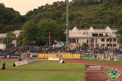 7.Spieltag: TuS - Arminia Ludwigshafen (3:0)