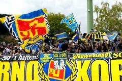 8.Spieltag: TuS - SV Babelsberg  (1:1)